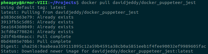 Tutorial: Using Docker_Puppeteer_Jest to execute a headless Chrome